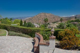 17911  Vista Lomas Drive  , Poway, CA 92064 (#150000661) :: The Marelly Group | Realty One Group