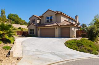 1994  Chopin Way  , Oceanside, CA 92054 (#150010992) :: The Marelly Group | Realty One Group