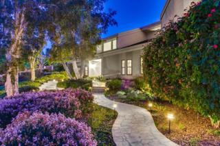 15912  Ranch Hollow Road  , Poway, CA 92064 (#150012463) :: The Marelly Group | Realty One Group
