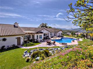 31726  Nira Lane  , Bonsall, CA 92003 (#140022614) :: The Marelly Group | Realty One Group