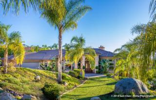 2441  Oak Canyon Pl  , Escondido, CA 92025 (#140052559) :: Whissel Realty
