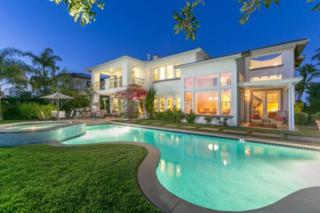 450  Sandalwood Ct  , Encinitas, CA 92024 (#150021018) :: The Marelly Group | Realty One Group