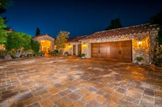 15768  Boulder Mountain Road  , Poway, CA 92064 (#140022670) :: The Marelly Group | Realty One Group