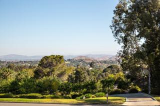 13583  Orchard Gate Road  , Poway, CA 92064 (#150020400) :: The Marelly Group | Realty One Group