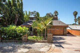 1802  Eucalyptus Ave.  , Encinitas, CA 92024 (#140052403) :: The Marelly Group | Realty One Group