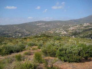 4  Dehesa Road  20, Alpine, CA 91901 (#140062450) :: Whissel Realty