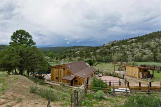 1696  Hs 11  , El Rito, NM 87581 (MLS #201304260) :: The Very Best of Santa Fe