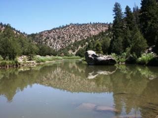 9  Rio Chama Canyon Ranch  , Cebolla, NM 87518 (MLS #201305773) :: The Very Best of Santa Fe
