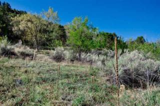 Upper Canyon Road, 4 Contiguous Lots  , Santa Fe, NM 87501 (MLS #201402655) :: The Very Best of Santa Fe