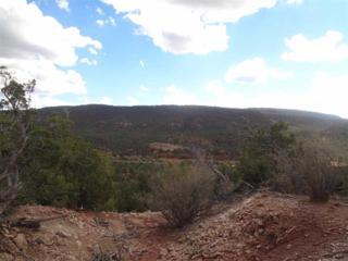 23A  Windspirit Road  , Santa Fe, NM 87505 (MLS #201405010) :: The Very Best of Santa Fe