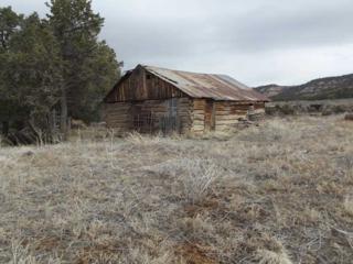 95  Highway 595  , Lindrith, NM 87046 (MLS #201405379) :: The Very Best of Santa Fe