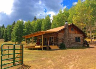 Broke Off Mountain Ranch  , Petaca, NM 87577 (MLS #201500834) :: The Very Best of Santa Fe