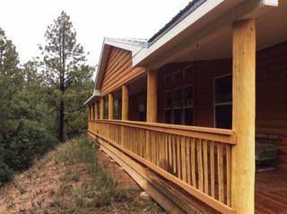State Highway 63  , Pecos, NM 87552 (MLS #201502240) :: The Very Best of Santa Fe