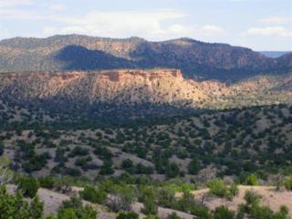 0  Rancho Canon Seco  , Ojo Caliente, NM 87549 (MLS #201201127) :: The Very Best of Santa Fe