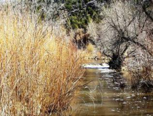 0  Rancho Servilleta  , La Madera, NM 87539 (MLS #201202018) :: The Very Best of Santa Fe