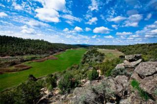 The Dove Ranch  , Tierra Amarilla, NM 87575 (MLS #201202134) :: The Very Best of Santa Fe