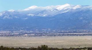 22  Platinum  , Santa Fe, NM 87505 (MLS #201300815) :: The Very Best of Santa Fe