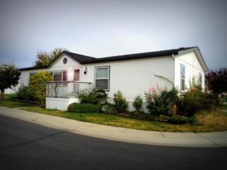 11303 E Jackson #49  , Spokane Valley, WA 99206 (#201426149) :: The 'Ohana Realty Group