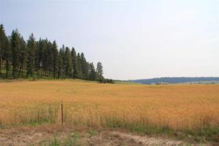 113xxx E Taylor Rd  Lot C, Mead, WA 99021 (#201511518) :: The Synergy Group