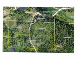 XX  Calispel Trail Loop  Parcel 43311511, Newport, WA 99156 (#201513229) :: The Synergy Group