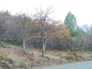 Fall River-Glenburn Road  , Fall River Mills, CA 96028 (#14-5371) :: Cory Meyer Home Selling Team