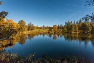 32677  Rock Creek Rd  , Manton, CA 96059 (#14-5388) :: Cory Meyer Home Selling Team