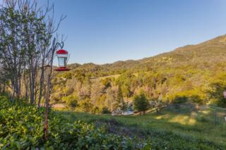 14736  Bollibokka Way  , Redding, CA 96003 (#15-1299) :: Cory Meyer Home Selling Team