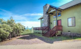 13805  Broken Branch Trl  , Redding, CA 96003 (#15-1805) :: Cory Meyer Home Selling Team