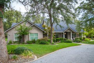 2480  Marlene Ave  , Redding, CA 96002 (#14-4901) :: Cory Meyer Home Selling Team