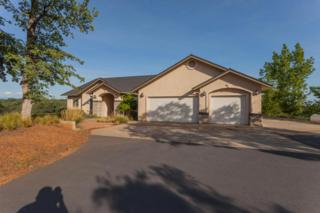 15350  Royal Oaks Drive  , Red Bluff, CA 96080 (#15-1915) :: Cory Meyer Home Selling Team