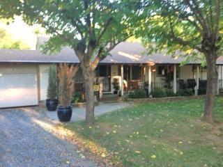 10173  Salmon Creek Rd  , Redding, CA 96003 (#15-294) :: Cory Meyer Home Selling Team