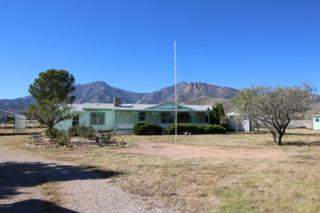 5430 E Pleasant View  , Hereford, AZ 85615 (MLS #152736) :: Service First Realty