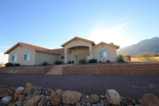 9292 S Lippizan Place  , Hereford, AZ 85615 (MLS #153003) :: Service First Realty