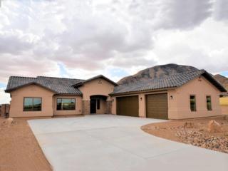 6591 E Saddlehorn Circle  , Hereford, AZ 85615 (MLS #153106) :: Service First Realty