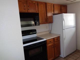 1205  Cottonwood Drive  , Sierra Vista, AZ 85635 (MLS #153158) :: Service First Realty