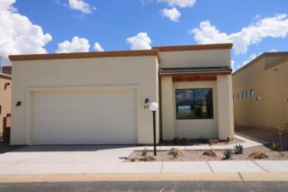 637 S Clubhouse Lane  , Sierra Vista, AZ 85635 (MLS #153173) :: Service First Realty