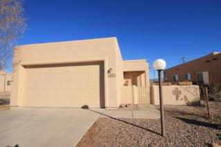 537 S Taylor's Trail  , Sierra Vista, AZ 85635 (MLS #153263) :: Service First Realty