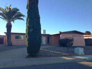 1210 N Catalina Drive  , Sierra Vista, AZ 85635 (MLS #153489) :: Service First Realty