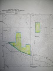 39-008j  Border Road  , Bisbee, AZ 85603 (MLS #154288) :: Service First Realty