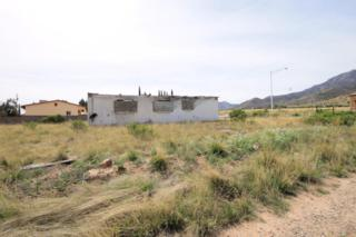 7233 S Highway 92  , Hereford, AZ 85615 (MLS #154440) :: Service First Realty
