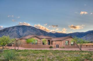 6306 E Lippizan Way  , Hereford, AZ 85615 (MLS #154494) :: Service First Realty