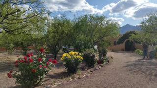 7030 S Y Lightning Ranch Road  , Hereford, AZ 85615 (#154586) :: Long Realty Company