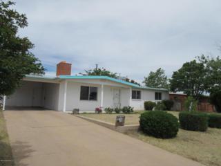 181 E Kayetan Drive  , Sierra Vista, AZ 85635 (MLS #154752) :: Service First Realty