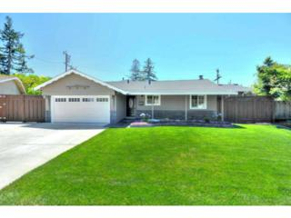 1990  Bernice Wy  , San Jose, CA 95124 (#81424192) :: Keller Williams - Shannon Rose Real Estate Team