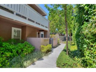 631 E El Camino Real #104  , Sunnyvale, CA 94087 (#81425276) :: Keller Williams - Shannon Rose Real Estate Team
