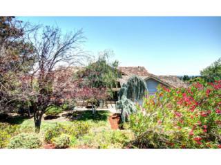 10386  Avenida Ln  , Cupertino, CA 95014 (#81431109) :: Keller Williams - Shannon Rose Real Estate Team