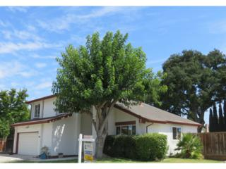 104  Meadwell Ct  , San Jose, CA 95138 (#81431189) :: RE/MAX Real Estate Services