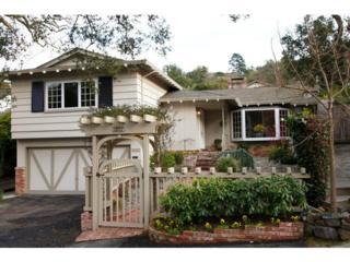 2227  Carmelita Dr  , San Carlos, CA 94070 (#81431617) :: Keller Williams - Shannon Rose Real Estate Team