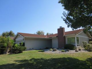 6253  Solano Dr  , San Jose, CA 95119 (#81431632) :: Keller Williams - Shannon Rose Real Estate Team