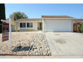2488  Dumont Ci  , San Jose, CA 95122 (#81433179) :: RE/MAX Real Estate Services